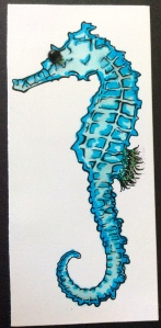 Detailed look at seahorse